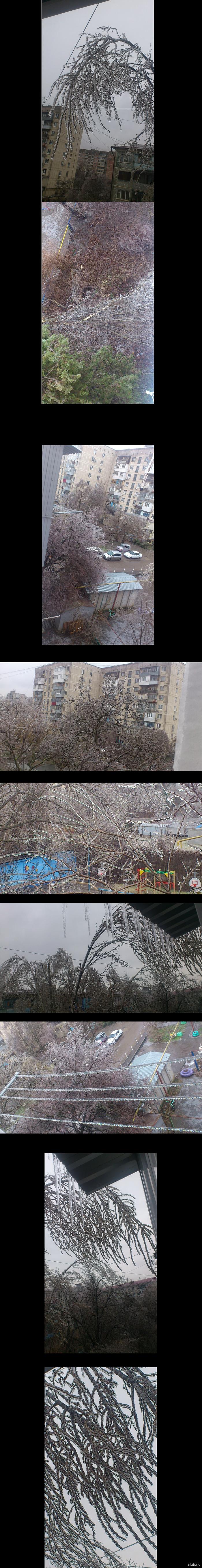 Типичная, теплая Краснодарская зима. Вчера прошел легкий дождик в Краснодаре. Сейчас +1 +2 на улице. По городу все разбито, деревья перевалены, магазины, машины, трубы разбиты деревьями.