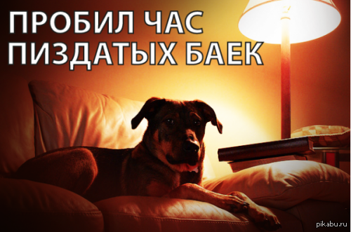 https://cs2.pikabu.ru/post_img2/2014/01/23/6/1390464049_1992120055.png