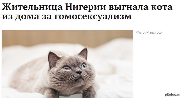 А вы говорите что в России много гомофобов