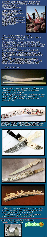 penis-morzhoviy