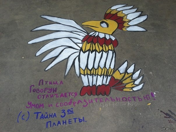 Птица Говорун Птица Говорун отличается умом и сообразительностью!