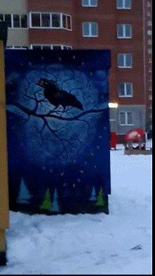 Креативный подход к басне Крылова..) в одном из дворов нашего города.