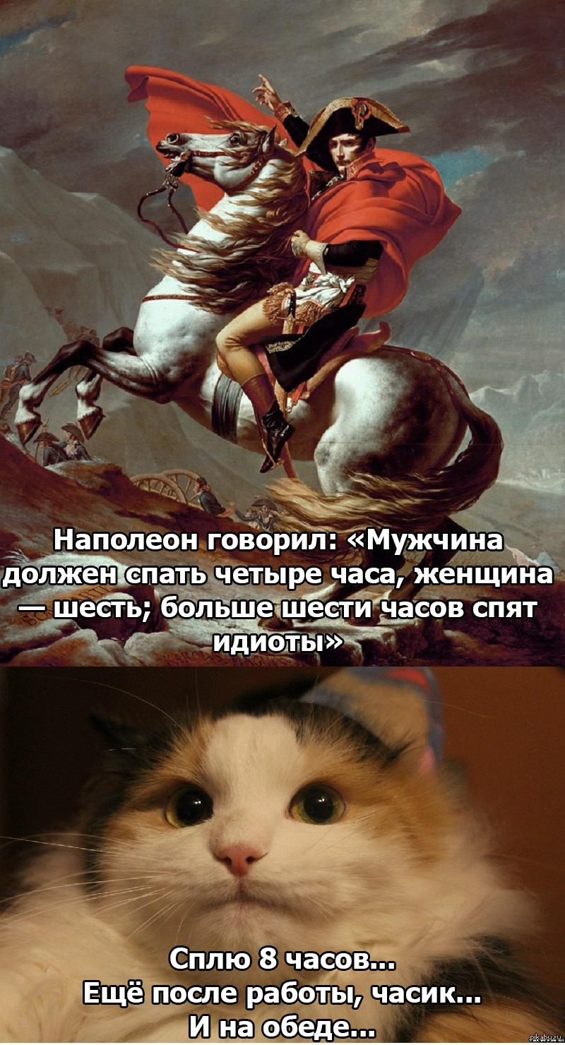 Наполеон картинки прикольные